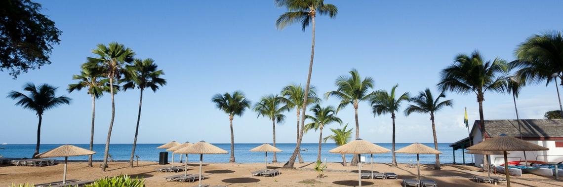 Guadeloupe, sur les routes du rhum